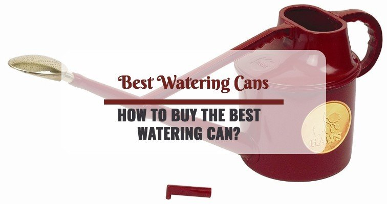 Best Watering Cans review