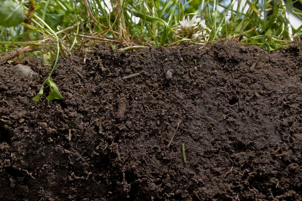 Components that make up a Healthy Soil