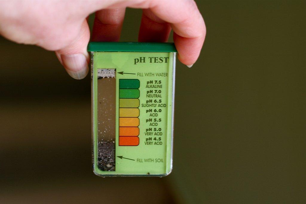 Soil PH Test