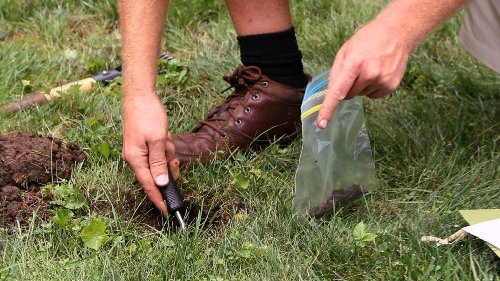 Soil Test for Garden Prep