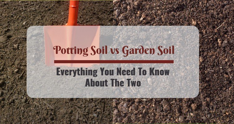Potting Soil Vs Garden Most