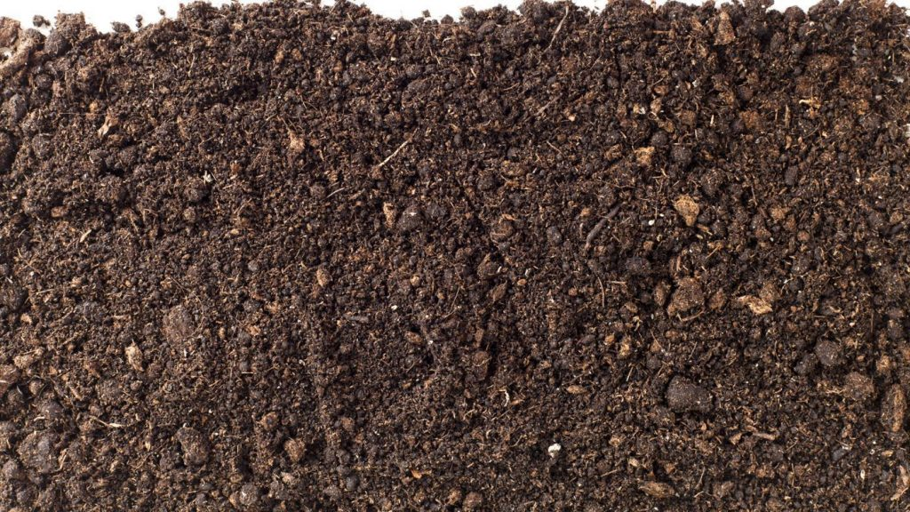 What is Potting Soil