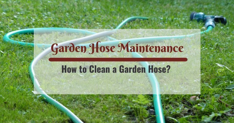 How to Clean a Garden Hose