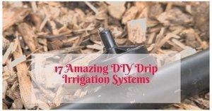 17 Amazing DIY Drip Irrigation Systems