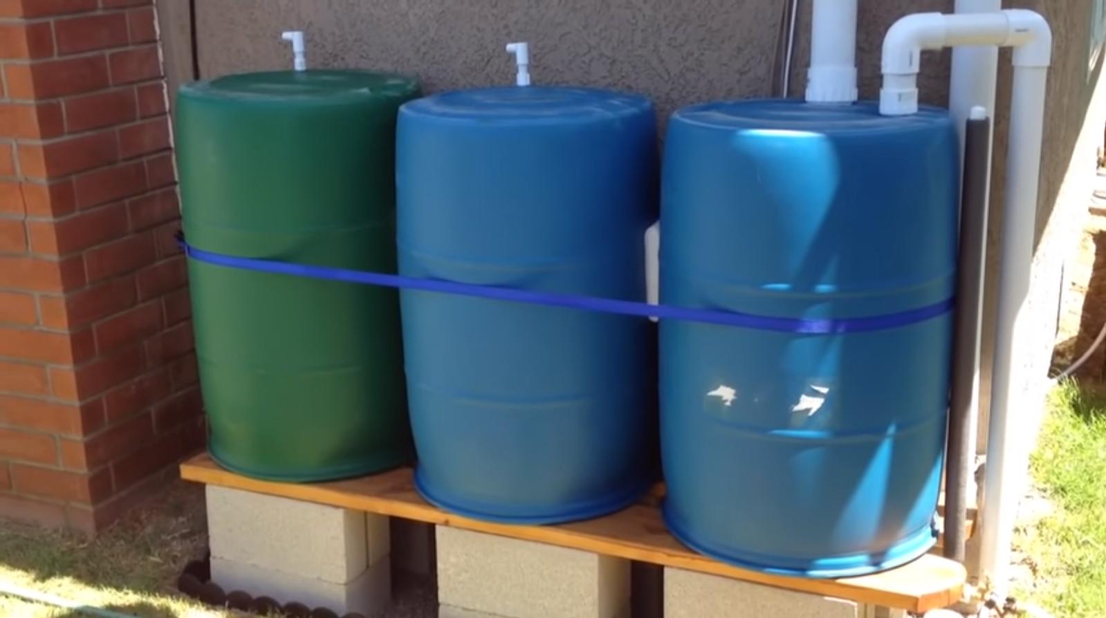 DIY Rainwater Drip Irrigation System