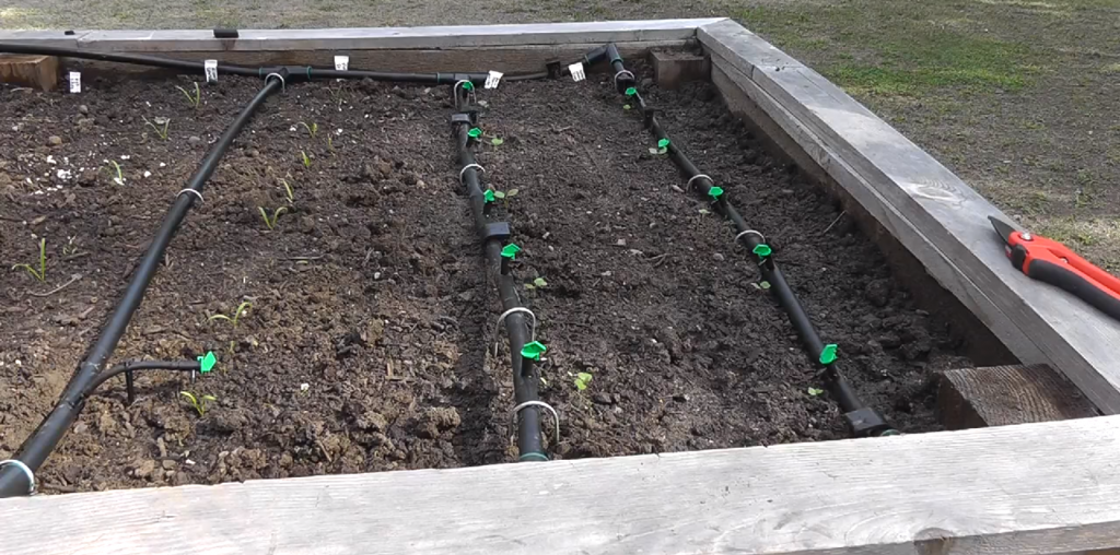 Raised Bed Drip Irrigation System