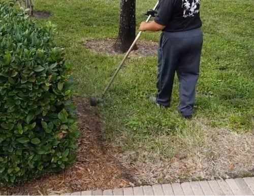 Edging With a String Trimmer