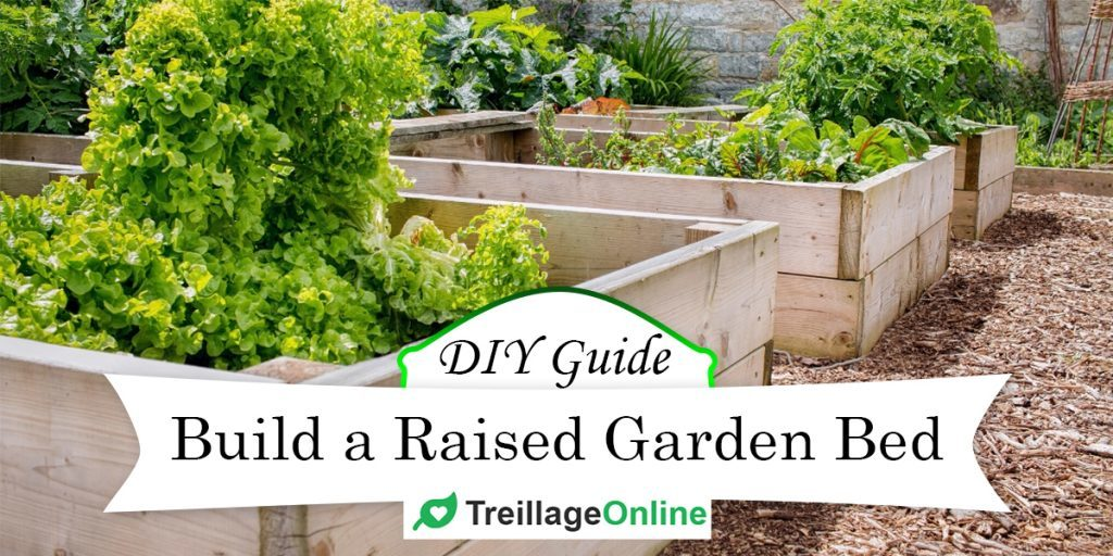 How To Build A Raised Garden Bed Diy Guide With Pictures